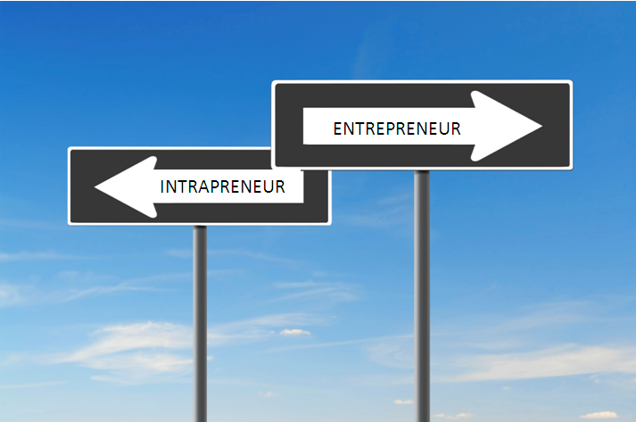 Image result for intrapreneurs and entrepreneurs